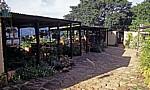 Bvumba Mountains (Bergregion): Kleines Café - Manicaland Province