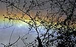Zweige vor einem Regenbogen - Victoriafälle