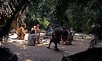 Jungle Junction: Touristen relaxen im Aufenthaltsbereich - Bovu Island