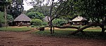Safari Camp: Chalets - Central Region