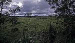 Fahrt Kamuzu Dam - Lilongewe: Landschaft - Central Region