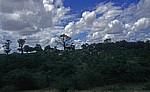 Busfahrt Blantyre - Harare: Tete-Korridor - Kleines Dorf in typischer Landschaft - Provinz Tete