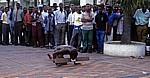 First Street: Straßenkünstler - Harare