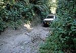 Geländewagen auf einer Piste - Poroto-Berge