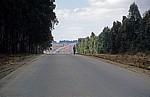 A 104: Einsamer Radfahrer auf der Straße - Mbeya Rural District