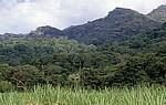 Blick auf den Udzungwa Mountains National Park mit den Sanje Falls (Wasserfälle) - Morogoro Region