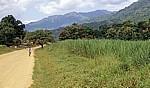 Ifakara Road: Kleines Dorf auf dem Weg zum Udzungwa Mountains National Park - Morogoro Region