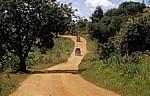 Fahrzeuge auf dem Weg ins Selous Game Reserve - Selous Kisaki Road