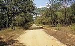 Fahrt Mtemere Gate, Selous Game Reserve - Daressalam: Straße - Pwani Region