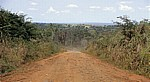 Fahrt Mtemere Gate, Selous Game Reserve - Daressalam: Fahrzeug auf dem Weg nach Daressalam - Pwani Region