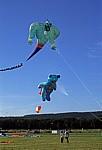 Internationales Drachenfest: Drachen Dschinni und Flugbär - Melle