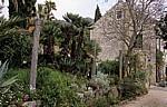 Arboretum von Trsteno: Gucetic-Lustgarten vor der Sommerresidenz - Trsteno