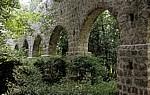 Arboretum von Trsteno: Aquädukt  - Trsteno