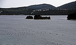 Malostonski zaljev (Kanal Malog Stona, Bucht von Mali Ston): Austernzucht um die Insel Bisaci - Gespanschaft Dubrovnik-Neretva