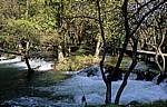 Fluß Krka oberhalb der Skradinski buk (Skradin-Wasserfälle): Holzsteg - Nationalpark Krka