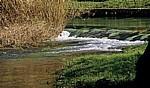 Fluß Krka oberhalb der Skradinski buk (Skradin-Wasserfälle) - Nationalpark Krka