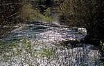 Fluß Krka oberhalb der Skradinski buk (Skradin-Wasserfälle): Kaskaden - Nationalpark Krka